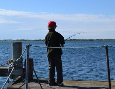 Hornfiskefestival på Samsø