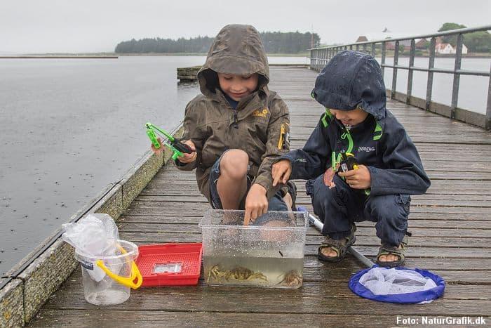Naturguide.dk - test af startpakke til vandet