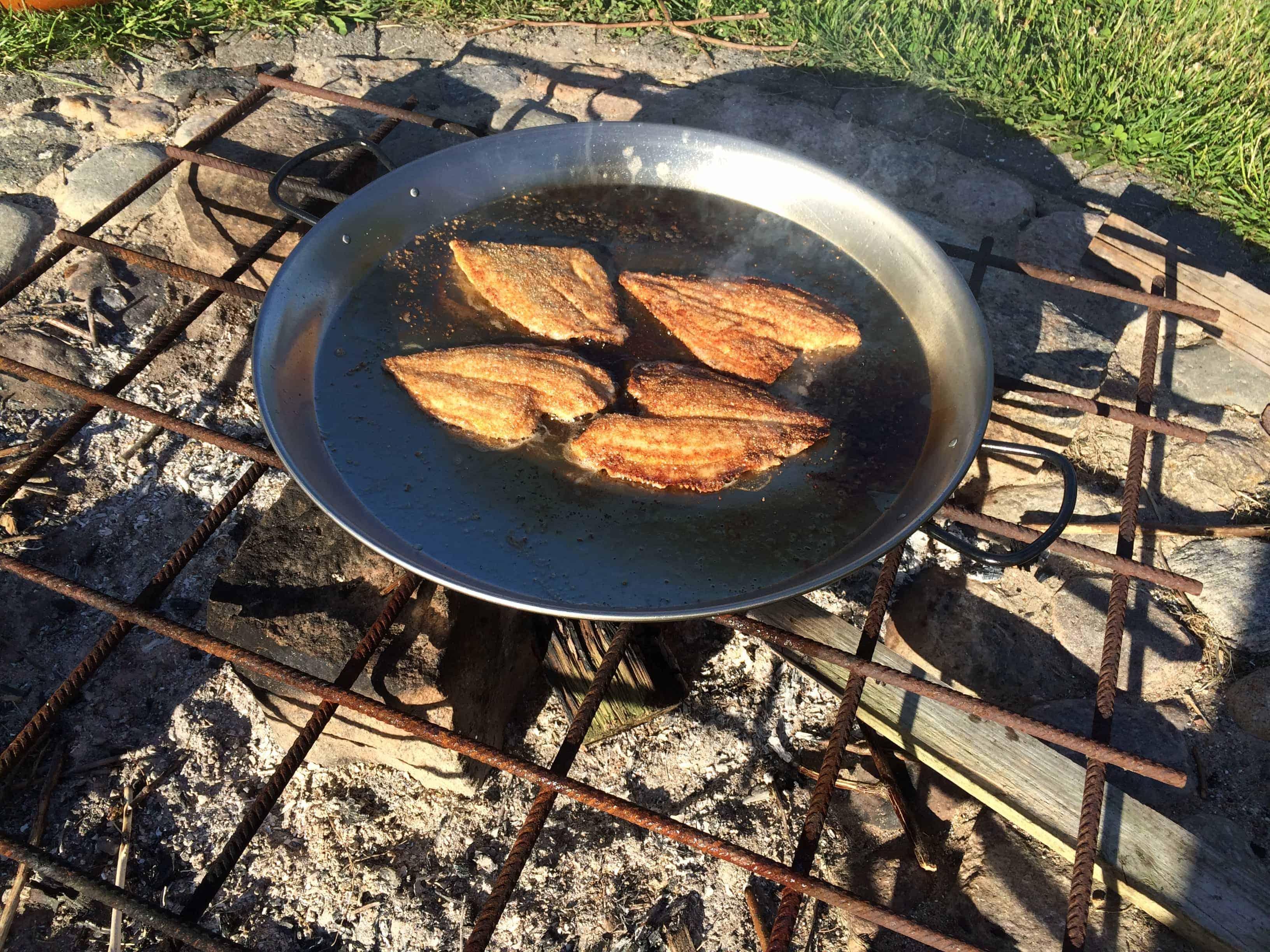 Fiskefilet stegt på bålpande