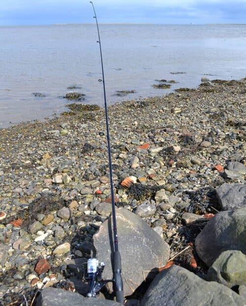 Abu Cardinal fiskesæt