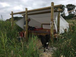Shelter tur