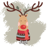 Julegaver jagt