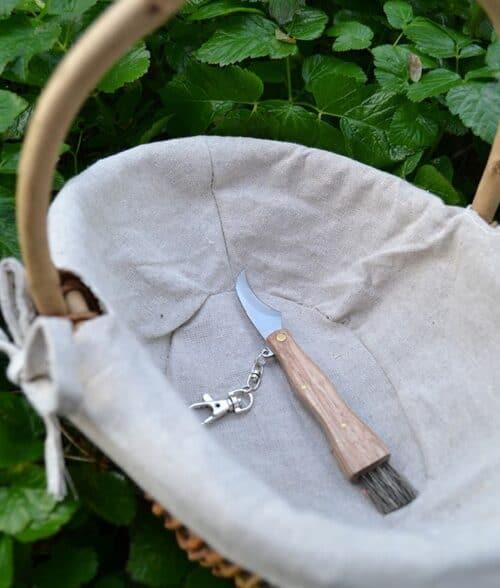 Lille sæt svampekurv og kniv