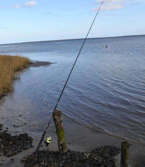 Junior fiskesæt Mitchell