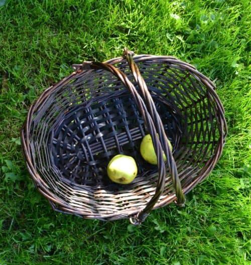 Kurv til svampe eller æbler
