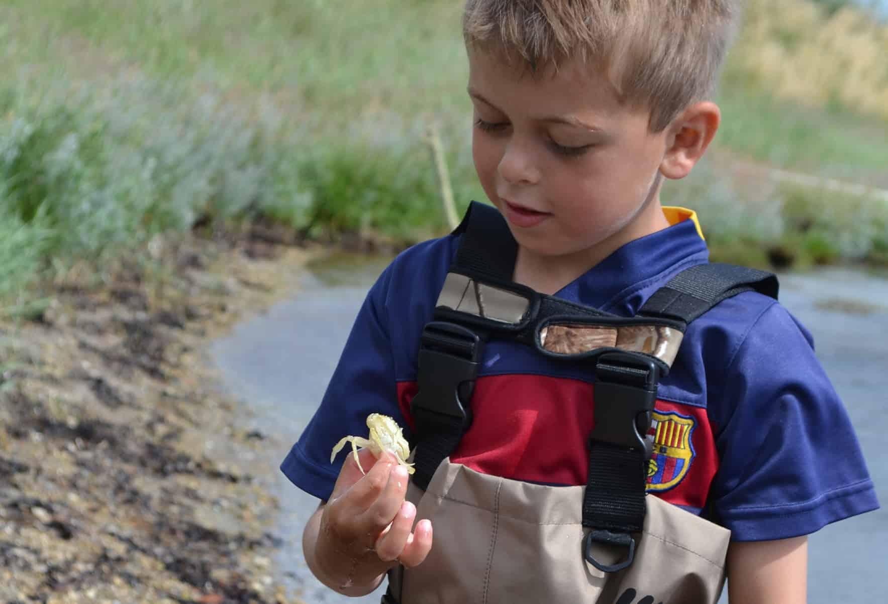 Vandsjov - Matti har fanget en lille krabbe