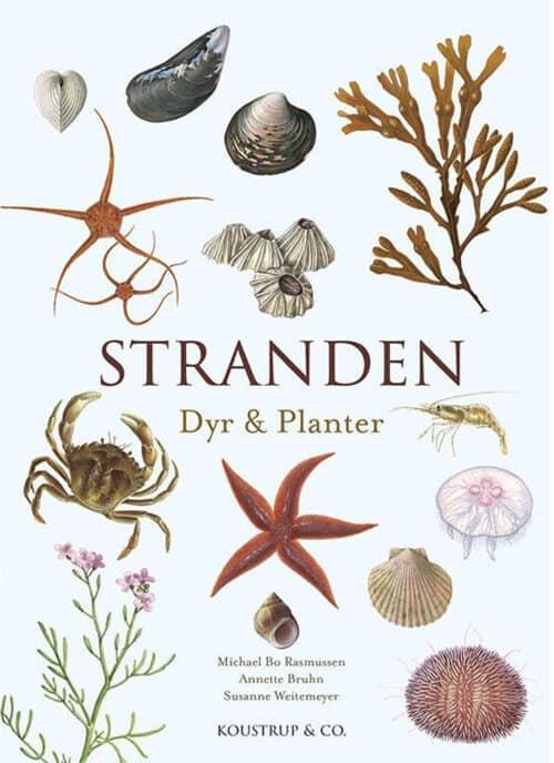 Stranden dyr & planter